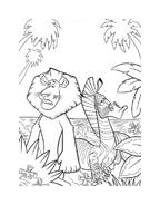 Madagascar da colorare 101