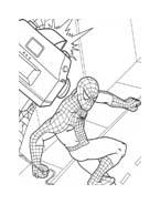 Spiderman da colorare 13