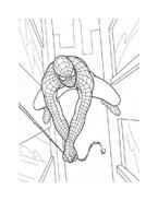 Spiderman da colorare 25