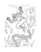 Spiderman da colorare 41