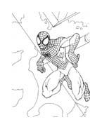 Spiderman da colorare 82