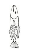 Pesce da colorare 2