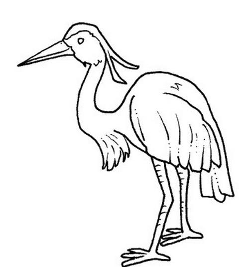 Uccello da colorare 2