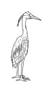 Uccello da colorare 3