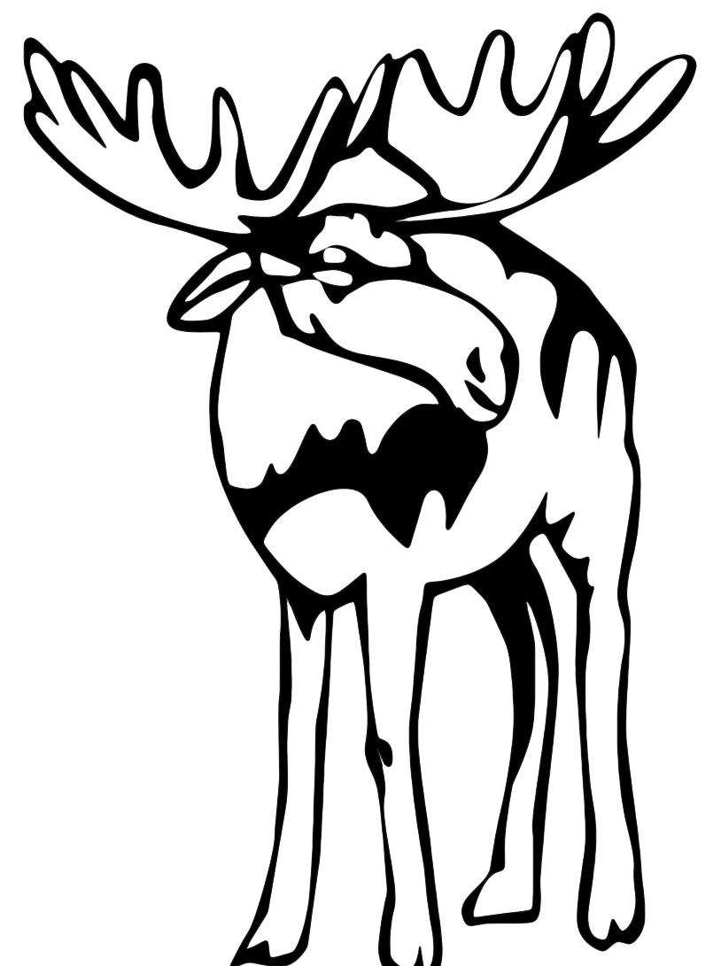 Alce e cervo da colorare 16
