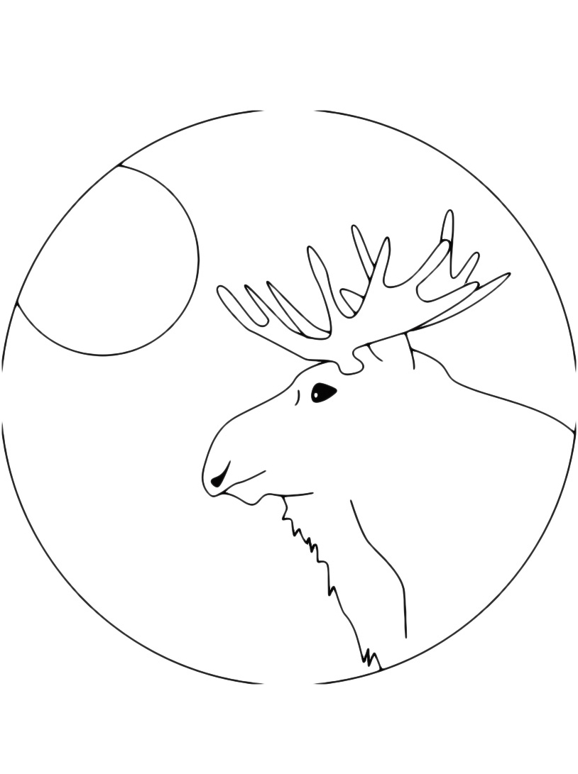 Alce e cervo da colorare 19