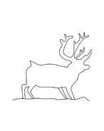 Alce e cervo da colorare 26