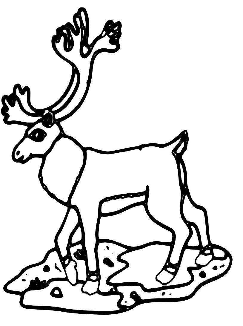 Alce e cervo da colorare 29