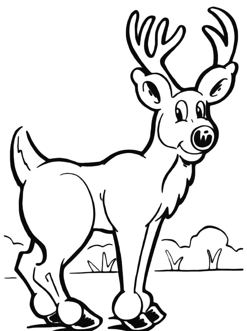 Alce e cervo da colorare 31