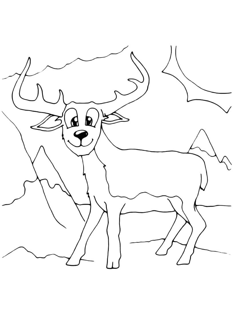 Alce e cervo da colorare 32