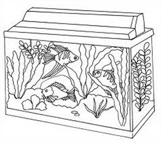 Pesce da colorare 3