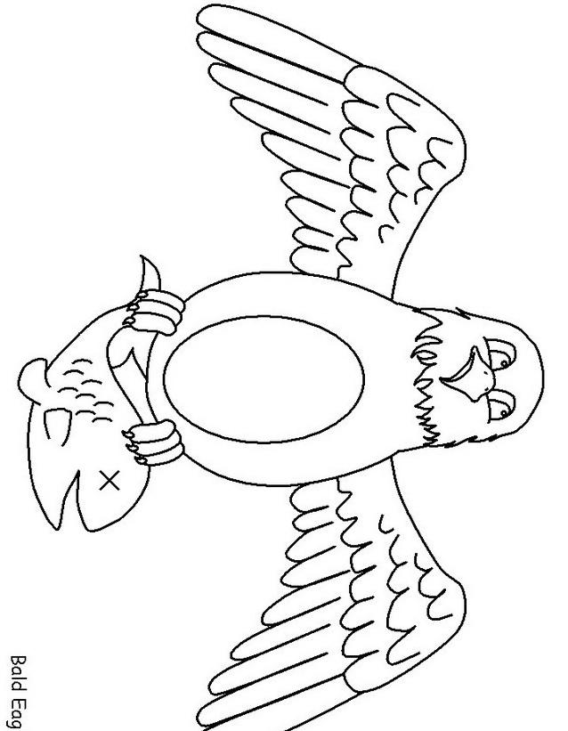 Aquila da colorare 2