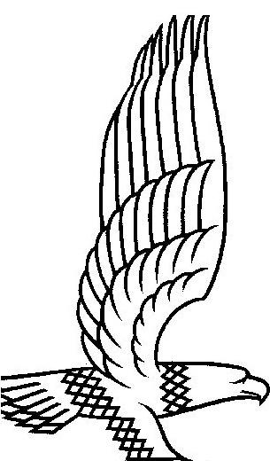 Aquila da colorare 4
