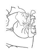Asterix e Obelix da colorare 45