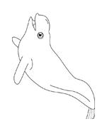 Balena da colorare 3