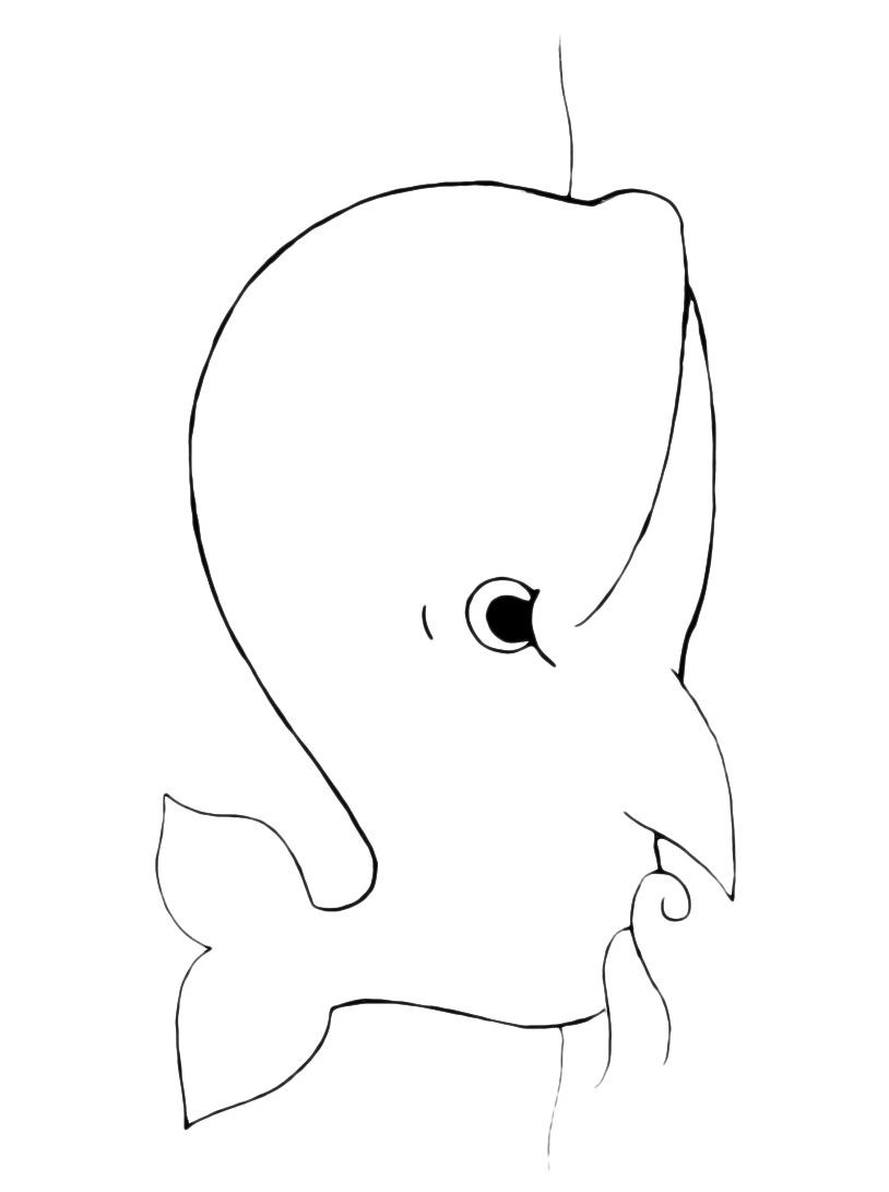 Balena da colorare 36