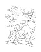 Bambi da colorare 7