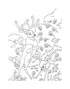 Bambi da colorare 13