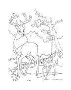 Bambi da colorare 15