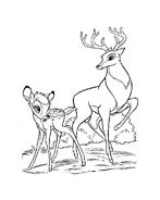 Bambi da colorare 33