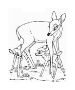 Bambi da colorare 39