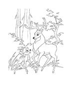 Bambi da colorare 56