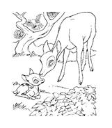 Bambi da colorare 111
