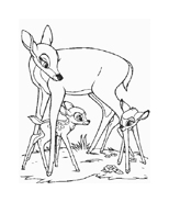 Bambi da colorare 113