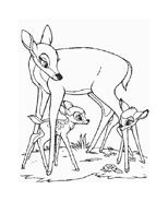 Bambi da colorare 113