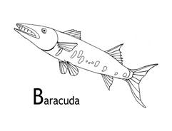 Pesce da colorare 10