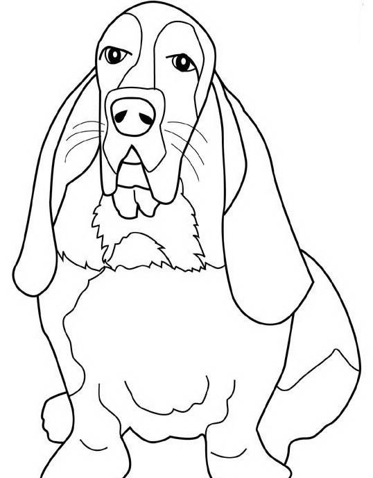 Cane da colorare 7