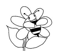Bee movie da colorare 40