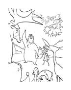 Boog elliot a caccia di amici da colorare 24