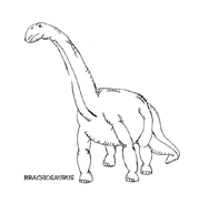 Dinosauro da colorare 15