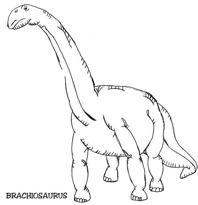 Dinosauro da colorare 15
