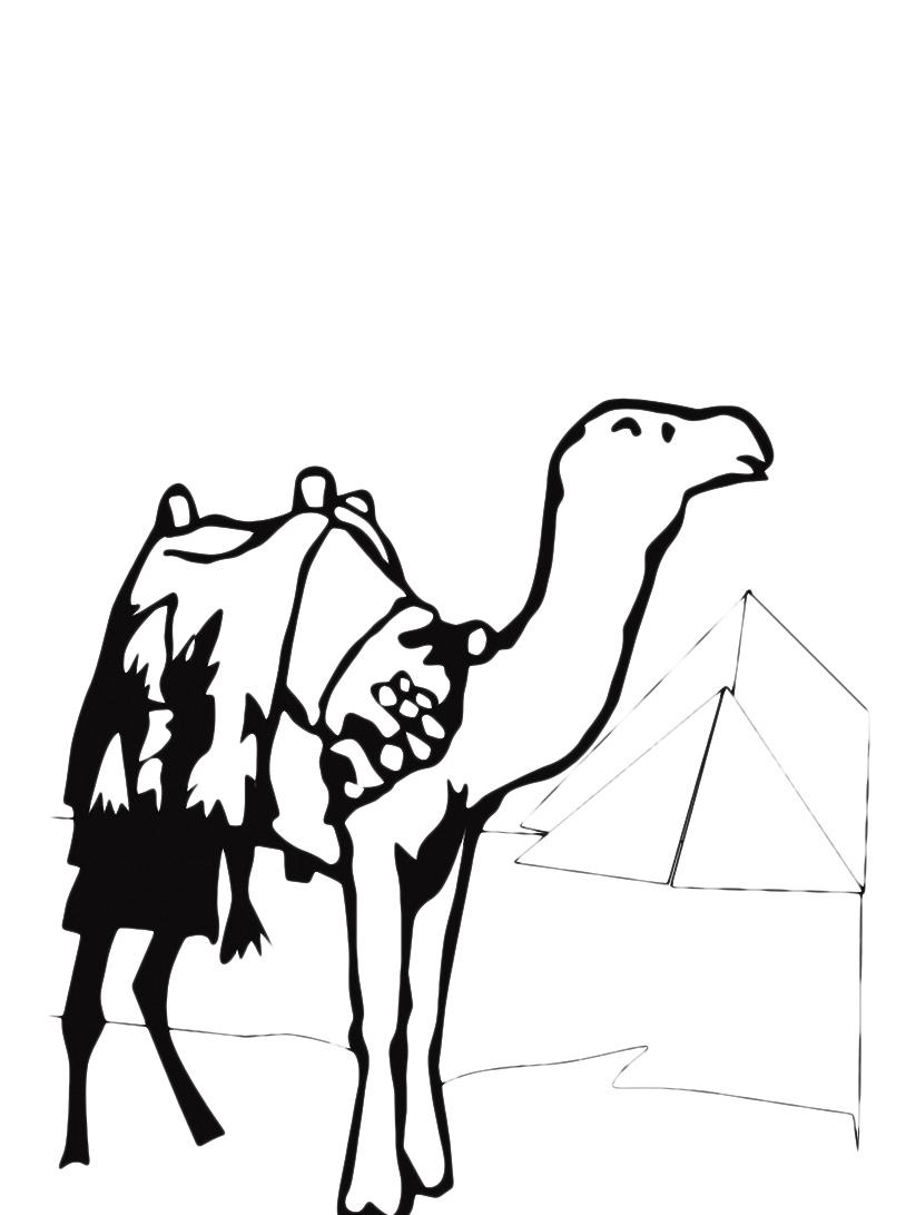 Camello da colorare 3