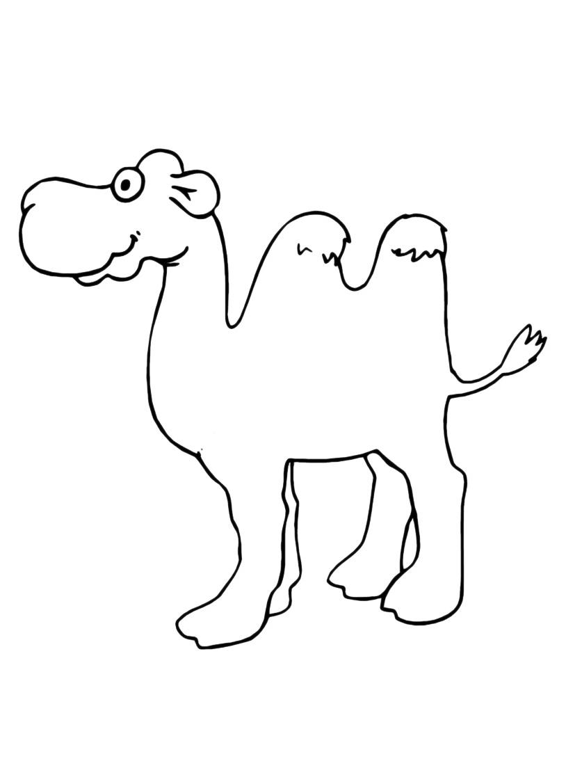 Camello da colorare 7
