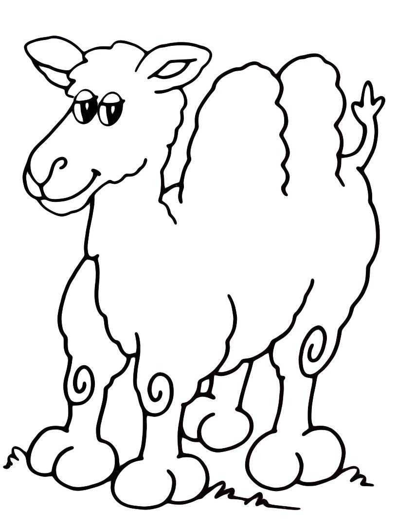 Camello da colorare 8