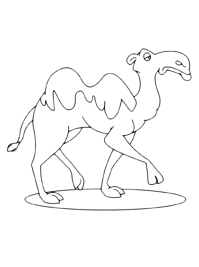 Camello da colorare 15