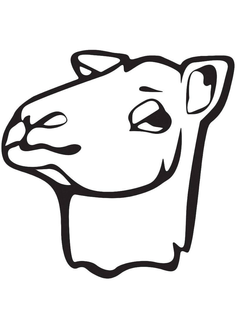 Camello da colorare 24