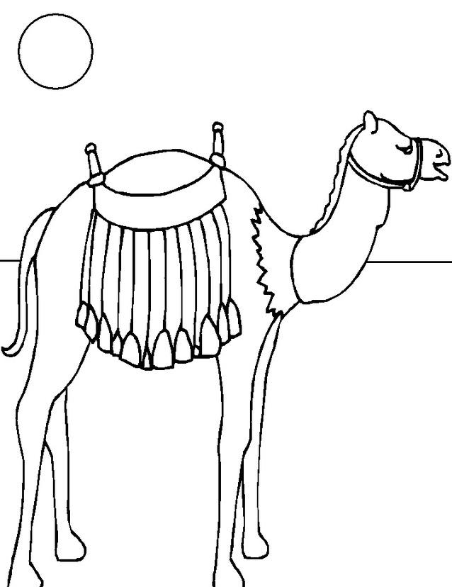 Camello da colorare 32