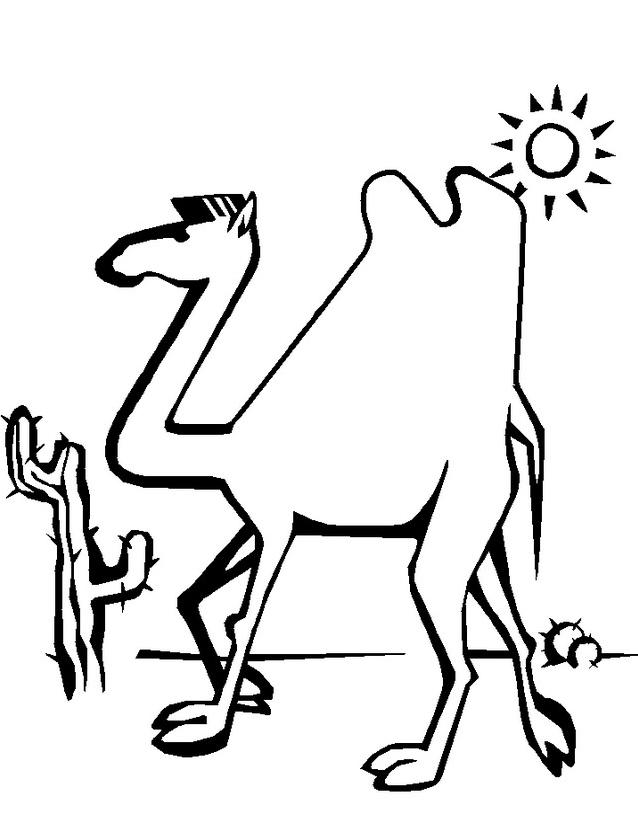 Camello da colorare 34