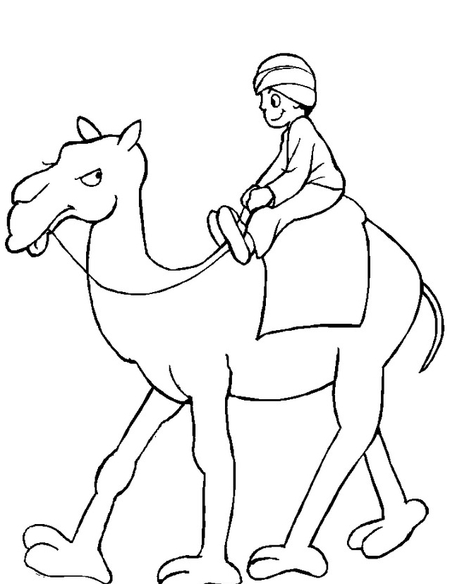 Camello da colorare 37