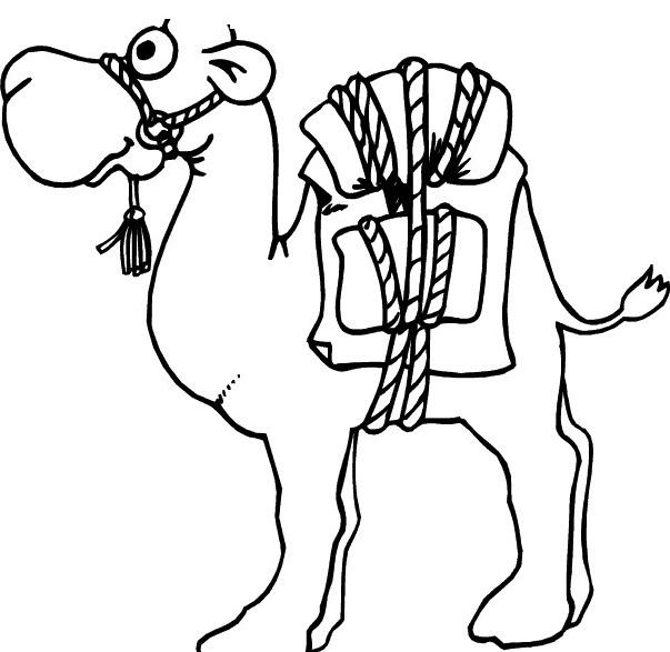 Camello da colorare 47