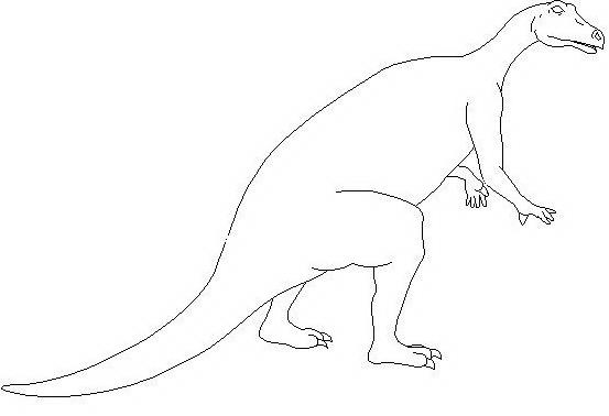 Dinosauro da colorare 18