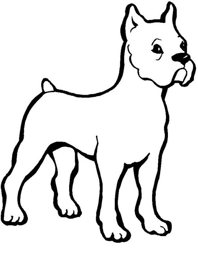 Cane da colorare 20