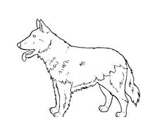 Cane da colorare 95