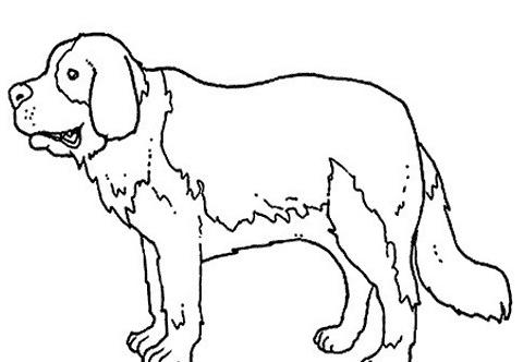 Cane da colorare 98