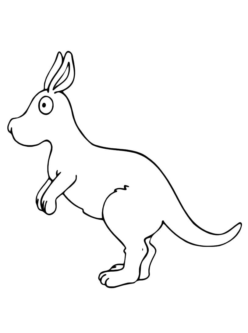 Canguro da colorare 16