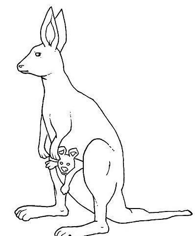 Canguro da colorare 23